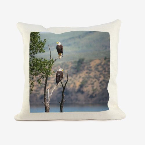 gifts/pillow-sham